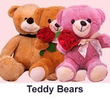 Teddy Bear Gifts to Nepal
