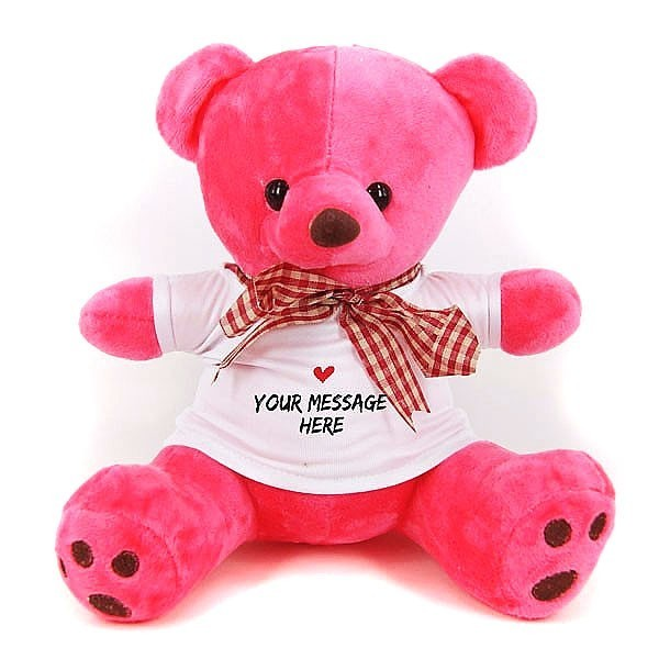 Personalized Teddy Bear with Custom Message TShirt
