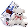 Mini Teddy Bear With Guylian Belgian Chocolates & Mug
