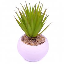 Artificial Succulent Plant in Vase (Agave tequilana)
