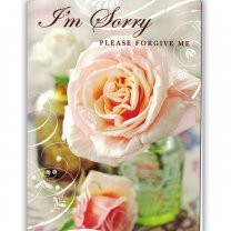 I'm Sorry Please Forgive Me - Greeting Card