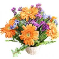 Refreshing Orange Gerbera Basket