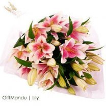 Beautiful Mix of Lily Flowers - Elegantly Handtied