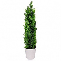 Artificial Cyprus Plant In White Vase