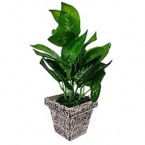 Artificial Money Plant in a Vase