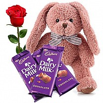 Peach Teddy Bear With Rose & Chocolate