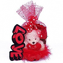 Special Valentine Gift Wrapped Love Basket
