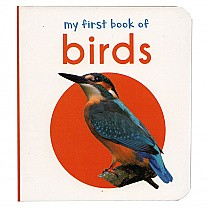 My First Book of Birds by Wonder House