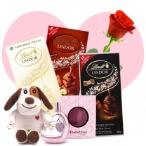 Bebe Sheer Mini 10ml Perfume Spray, Cutey Puppy and 3xLindt Chocolates for Her (Free Rose)