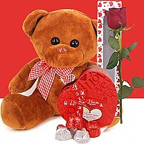 Brown Teddy Bear, Assorted Gourmet Chocolates Box and Free Rose