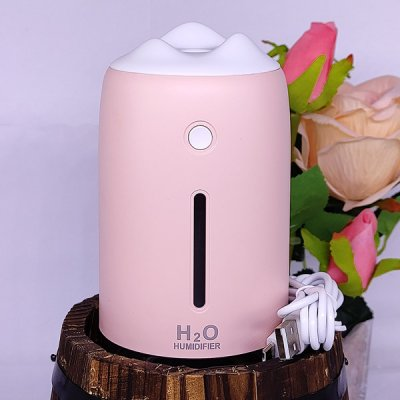 Portable Ambient Light H2O Humidifier 310ml With One Essential Oil