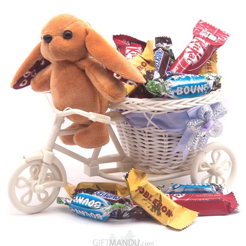 Cute Rabbit With Chocolate Rickshaw