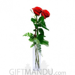 Two Romantic Fresh Red Roses Vase - You & Me
