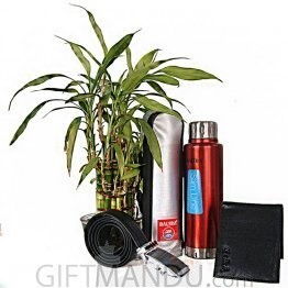 Lucky Bamboo Plant, Vacuum Flask, Belt & Wallet