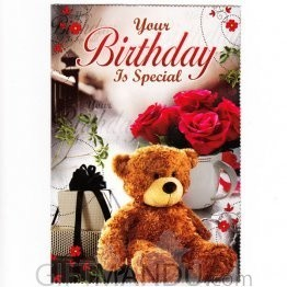 Your Birthday Is Special - Greeting Card