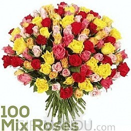 100 Reasons for YOU Being My Special Person (100 Fresh Long Mix Roses)