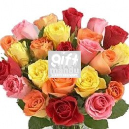 Two Dozen Colorful Roses Bunch