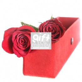 You and I Together - Two Roses in Elegant Red Box