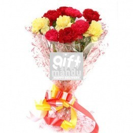 Ten Mix Color Carnation Bouquet - HID
