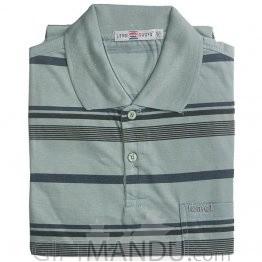 Green Color Regular Fit Stripe T-Shirt (XL)