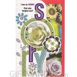 I am so SORRY Can you forgive me? -  Greeting Card