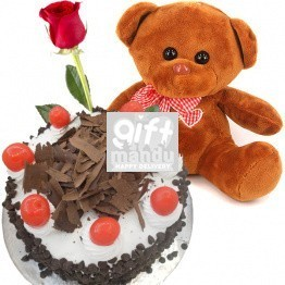 5 star cake and teddy bear