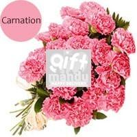 20 Fresh Pink Carnations Bunch - HID