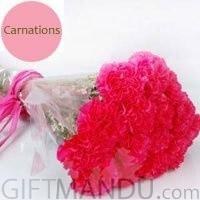 20 Fresh Carnations Bunch