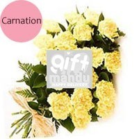20 Fresh Yellow Carnations Bunch