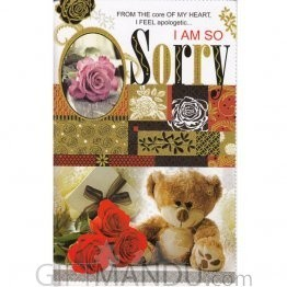 I AM SO SORRY - Greeting Card (GC-5260)