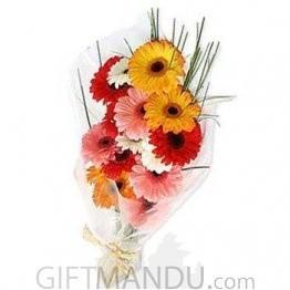 One Dozen Bright Gerbera Flowers Bunch