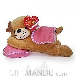 Cute Brown Dog Resting On Pillow
