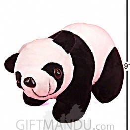 Cute And Lovely Hanging Panda