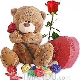 Gourmet Chocolate Box with Rose Carrying Love Teddy and Free Rose