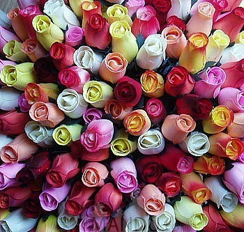 100 Roses to Nepal