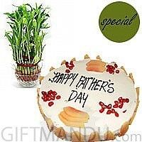 Sugar Free Five Star Cake with Lucky Bamboo Plant Mini Vase