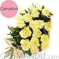 20 Fresh Yellow Carnations Bunch - HID
