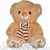 Bow Tie Teddy Bear (16 inches tall) for Dharan
