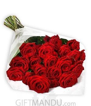 She Loves Red Roses