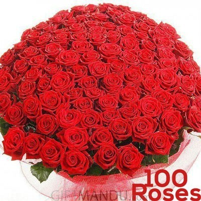 100 Long Stem Fresh Red Roses