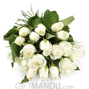 One Dozen White Roses Bunch