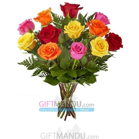 One Dozen Long Stem Rainbow Roses - HID