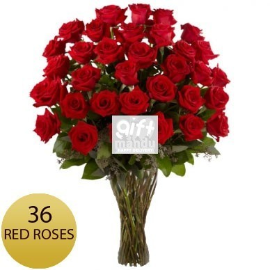 3 Dozen Long Stem Fresh Red Roses
