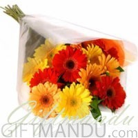 20 Fresh Mix Color Gerbera Daisy Bunch