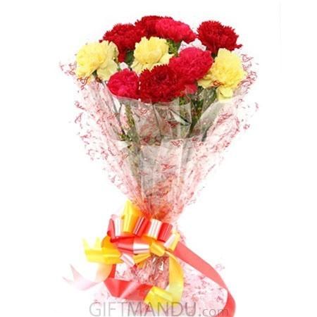 Ten Mix Color Carnation Bouquet