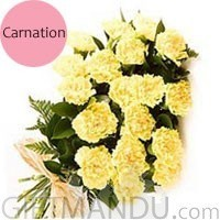 20 Fresh Yellow Carnations Bunch