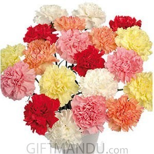 20 Refreshing Bright Carnation Flowers Bouquet - HID