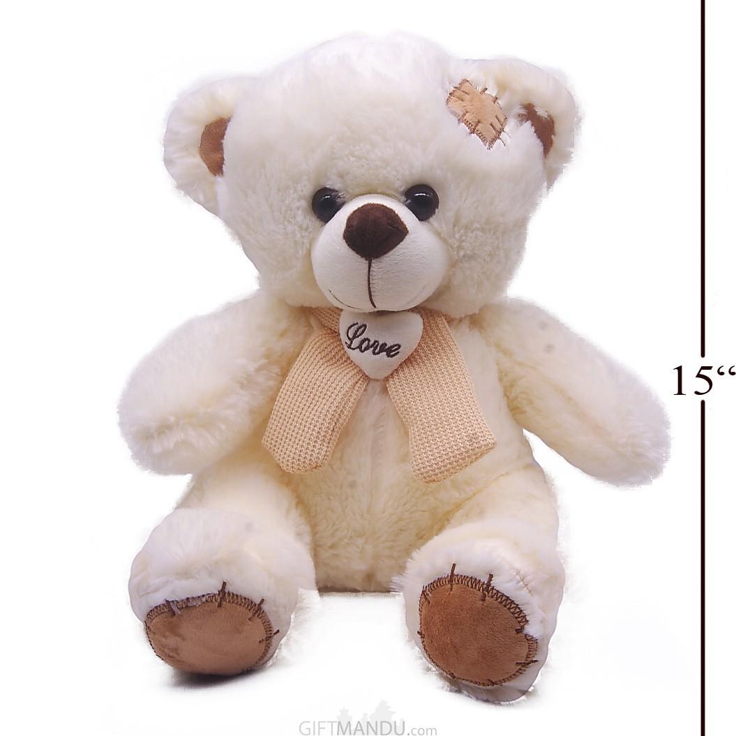Cute Little Teddy Bear (15 inchs tall)